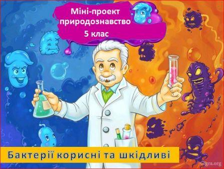 Міні-проект Бактерії корисні та шкідливі. Природознавство ...